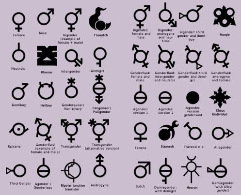 700px-Gender_Chart